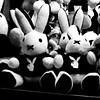 Tipomiffins (unaerica) Tags: park longexposure carnival italy milan color colour bunny bunnies architecture night fun outdoors lights amusement big interesting nikon funny long italia friendship sweet milano happiness games noflash luna plush amusementpark erica lunapark luci curious festa giostra notte lapin tenderness attraction giochi giostre funpark coniglio divertimento ferragosto kanin coniglietto laveno unaerica