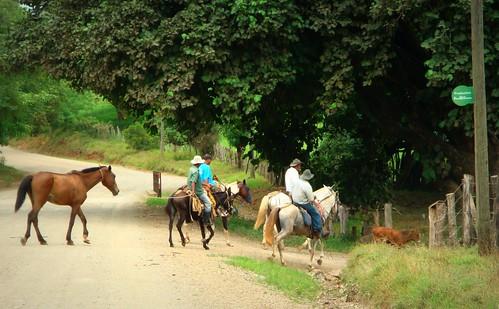 Un buen lugar para vivir la Costa Rica