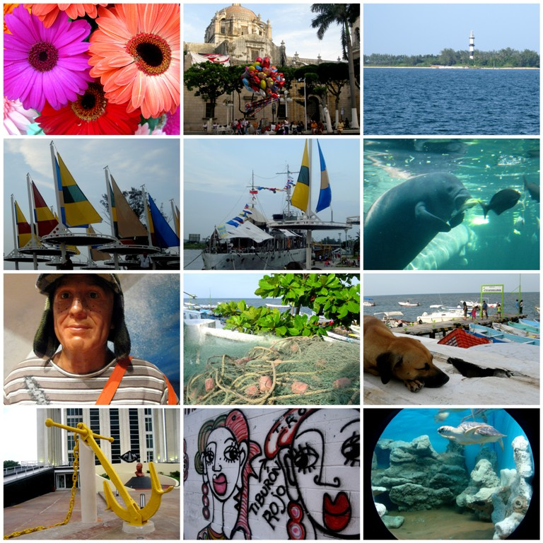 Collage Veracruz