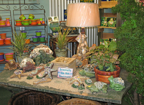 seashell designs indoor plants lamps gifts accessories