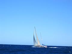 IMG_0080 (scottmcpollux) Tags: sailing segeln segelboot sailingboat