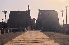 Luxor Temple (Fouad GM) Tags: temple egypt mosque nile karnak luxor pharoah valleyofthekings thebes ancientegypt bahari habu pharonic haggag ramseum