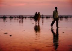 Sunset at Juhu beach (Willy Yacob) Tags: sunset india beach atardecer playa juhu mumbay juhubeach miradafavorita