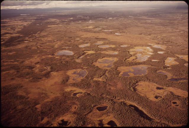 Swampy Ground near Mile 648 Is Typical of Marshy Areas in This Intermontane Plateau 081973 by The US National Archives