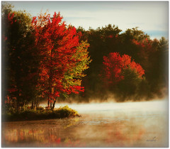-- autumn mist -- (xandram) Tags: autumn trees red mist lake reflections legacy photohop theunforgettablepictures saariysqualitypictures yourwonderland magicunicornverybest