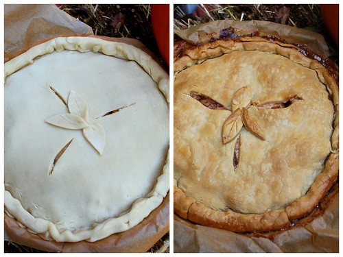 UD Apple Pie Collage