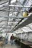 greenhouse160