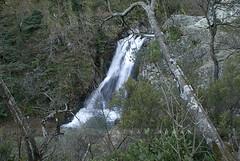 Su Den elalesi - Yalova (Sinan Doan) Tags: nature turkey waterfall trkiye s trkei naturephotos yalova doa elale   trkiy sudenelalesi yalovafotoraflar