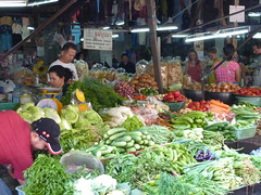 Shopping for ingredients at the local market