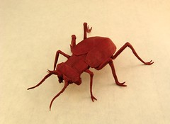Tiger Beetle (Jon_Tucker) Tags: paper jon origami tiger beetle fold tucker folds folding
