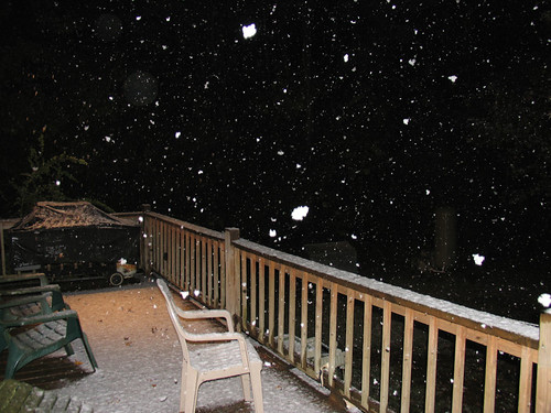 CrabAppleLane Back Deck - December 4, 2009 10:20PM