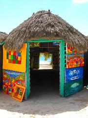 Colori caraibici / Caribbean colours (AndreaPucci) Tags: blue sea island mare dominicanrepublic picture quadro palm hut dominicana palma azzurro isola saona repubblica islasaona capanna repubblicadominicana andreapucci
