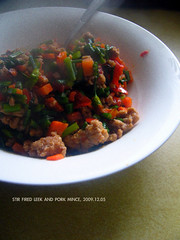 Stir fried leek and pork (339) (11) Tags: chinesefood pork homemade carrot leek day339      339365