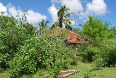 DSC_0055 (drs.sarajevo) Tags: trincomalee muthureast kadatkarachchenai