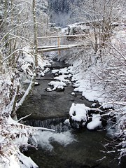Snowy Creek 2