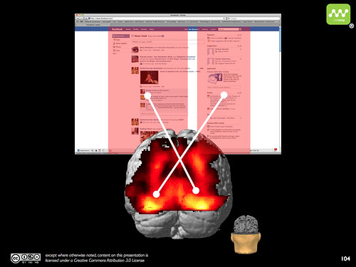 Facebook brain activation - visual cortex
