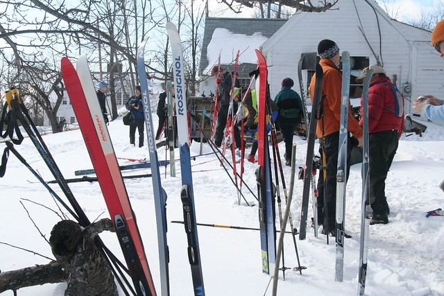 A Field of Skis