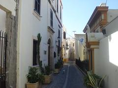 Old Town in Rhodes (Alexanyan) Tags: old town dodecanese hellenic island aegean sea europe hellas greece greek rhodes rodi rodos street cat flag