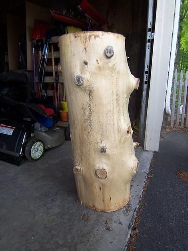 Orignal log