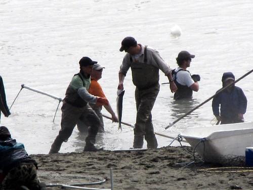 Kenai - Dip Net Fishing-3