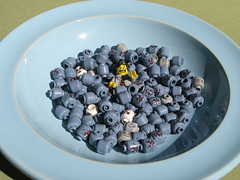 Zombie Blueberries in a Blue Bowl (Dunechaser) Tags: blue lego surreal bowl scream minifig zombies postapocalyptic postapoc apocalego