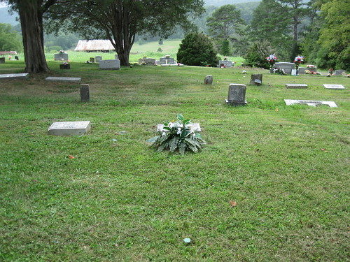 Mother's Grave from a Distance