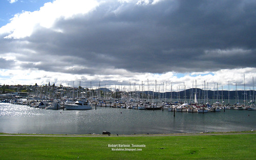 hobart harbour greenery wallpaper_wide
