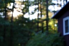 almost there (r♥biη elizabeth) Tags: blur home massachusetts lunenburgma lensustogether