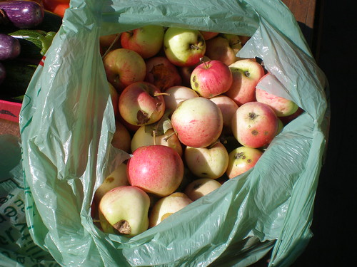 A bag of great yellow-red apples collected from a neighbours (unsprayed) tree at the cottage