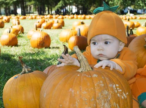 Pumpkin56