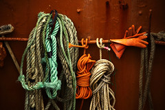 Orange gloves (Markus Moning) Tags: uk orange color colour port boot harbor scotland boat fishing ship harbour united kingdom vessel gloves glove oban around ropes hafen farbe schiff catchy schottland fishery strolling moning handschuhe seil seile fischerei markusmoning canoneos50d