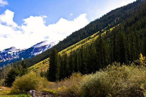 Colorado National Forest