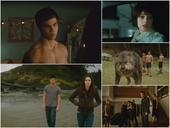 "New Moon TV Spot - ""Battle"" Screencaps (Luuuucia:)) Tags: twilight newmoon robertpattinson kristenstewart kstew edwardcullen ashleygreene alicecullen jacobblack taylorlautner rpattz"