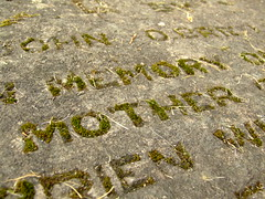 Loss (Daves shots) Tags: loss death decay mother gravestone newlife lcfe