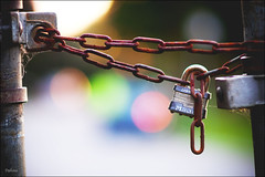 Locked Up (Daifuku Sensei) Tags: nikon rust colorful bokeh lock rusty explore scarborough portfolio chainlinkfence frontpage mastercraft d300 blufferspark scarboroughbluffs 85mmf14 samyangvivitarrokinonetc blogtombnov272009nsi