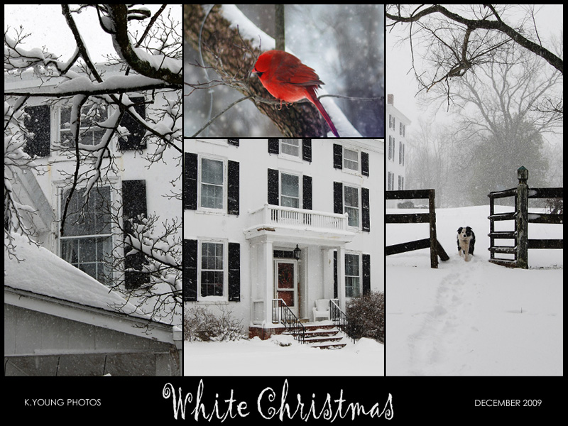 Mosaic Monday: White Christmas