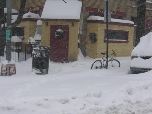 Wonderland Bike