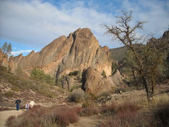 Pinnacles5