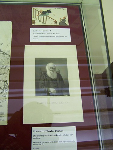 Responses to Darwin, Whipple Museum, University of Cambridge