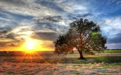 A Sunset on a Texas Farm (Stuck in Customs) Tags: travel sunset usa tree beautiful america landscape photography evening high colorful pretty texas dynamic stuck natural farm south north scenic flare photowalk lone top100 pastoral brady range plain 2009 hdr texan customs stuckincustoms d3x treyratcliff