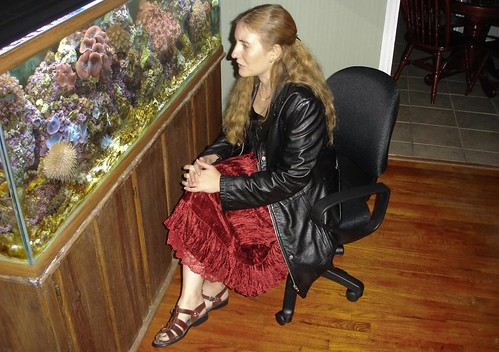 fish sarah livingroom fishtank blond rug reddress hardwood gettingready frillydress hairclip livecoral saltwatertank hairdown leathersandals greentoenails longblondhair blackleatherjacket girlinadress greentoenailpolish brownleathersandals shinymaterial