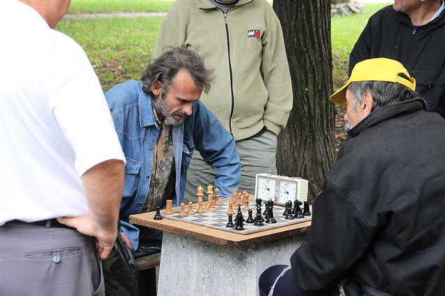 Шахматисти