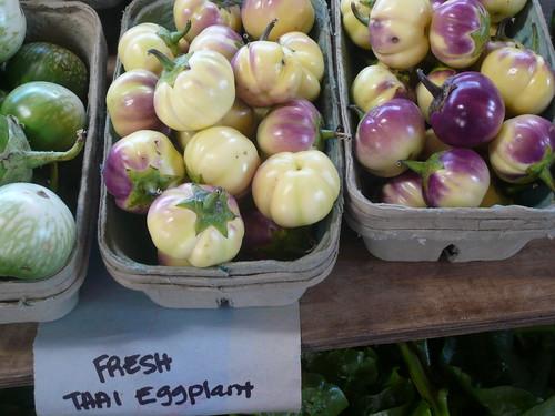 Thai eggplant 2