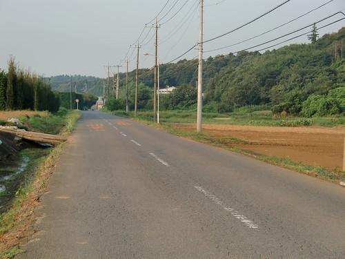 My promenade 3