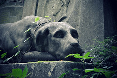 Thomas Sayers Tomb - Highgate Cemetery (rob cheatley) Tags: dog london cemetery graveyard archway highgate highgatecemetery thomassayers