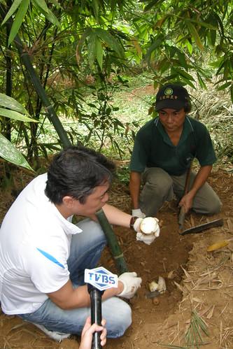 07.神田裕行先生說吳伯伯的筍有水梨般的甜味