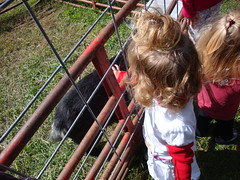 Lilliann Petting A Goat