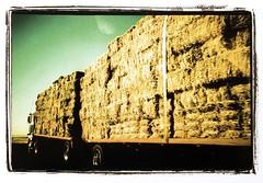 Dust Bowl_4 (Troyerimages.com) Tags: film xpro kodak e100vs yahsicat3