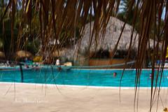 Palladium Hotels (R. Dominicana) (ЈΘŠΞПΔ72 ) Tags: republicadominicana color josema72 eos40d caribe pool bavaro palladiunhotels