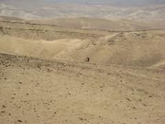 IMG_0564 (alexander.verdyan) Tags: bike eyal yaron ramash